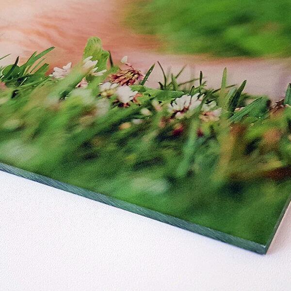 Hinterglasdruck auf transparenter Acrylplatte - ideal als hochwertiges Wandbild